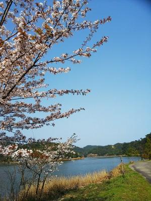 海老ケ池(海陽町浅川)