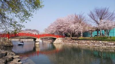 岩脇公園(阿南市羽ノ浦)