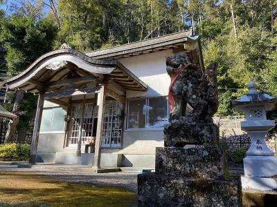 神社の敷地内って特別な空気感がありますよね。